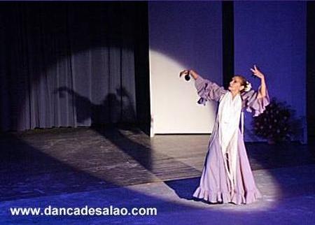 Fotografei o espetáculo de flamenco